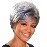 ALICIA FOXY SILVER, Monofilament Synthetic Wig, GERALDINE