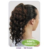 NEW BORN FREE 100% Human Hair Ponytail: 0152H TOP PC32/H
