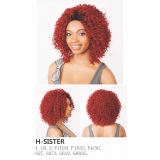 R&B Collection 21 Tress 100% HUMAN PREMIUM BLENDED Magic Lace Front Wig H-SISTER